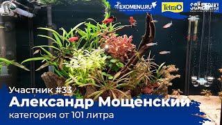 Остров 110 л Участник №33 в категории от 101 литра #Scalariki Aquascaping Contest 2021