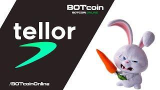 Криптовалюта Tellor (TRB)   Инвестиции в криптовалюту   Анализ криптовалют   BOTcoin.Online