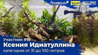 Аквариум 40 л Участник №19 в категории от 31 до 100 литра #Scalariki Aquascaping Contest 2021