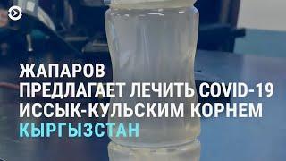 В Кыргызстане COVID-19 предлагают лечить... иссык-кульским корнем | АЗИЯ | 16.04.21