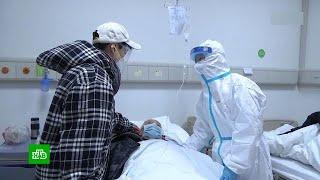 Роспотребнадзор: большинство заразившихся коронавирусом - старше 60 лет