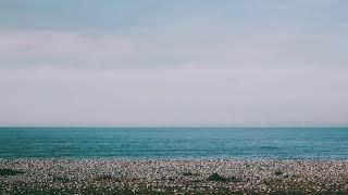 Прекрасный вид на пляж и горизонт