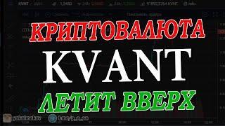 Криптовалюта KVANT / 100% +  за 5 Дней