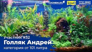 Травник 250 л Участник №32 в категории от 101 литра #Scalariki Aquascaping Contest 2021