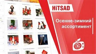 Осенне-зимний ассортимент в интернет магазине HITSAD