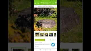 Интернет магазин HiTSAD мобильная версия.