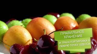 OtVelentiny: интернет-магазин свежих фруктов и овощей