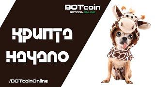 Криптовалюта НАЧАЛО   Криптовалюта для новичков   Анализ криптовалют   BOTcoin.Online