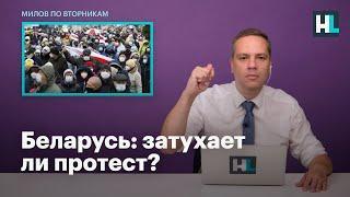 Владимир Милов и Дмитрий Навоша о том, затухает ли протест в Беларуси