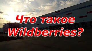 Что такое Wildberries? Вайлдберрис интернет магазин. Крупный бизнес.