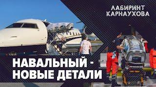Навальный | Новые подробности | Лабиринт Карнаухова